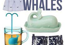 WHALES, balene, Fissazione di sempre