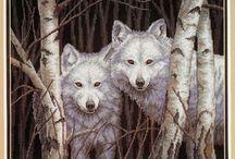 Keresztszem Farkasok