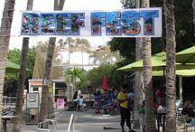 Reef Fest 2016