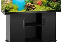Aquarium and cabinet.