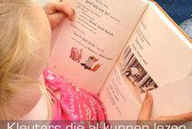 Lesidee taal