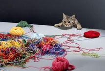 Cute! / by Mary Kay Thompson