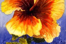 çiçek ve bitkiler / resimler ve boyamalar