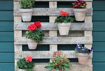 Garten / Blumenpalette