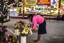 MSF en México / Noticias sobre los proyectos de Médicos Sin Fronteras en México