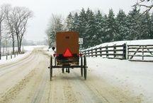 Amish & New Wilmington