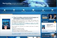 Informatique/Digital- Sites Internet / Sites Internet crées par l'agence Web Cognix Systems pour des sociétés informatiques