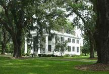 Plantations/Antebellum Homes / by Mary Jo Anderson