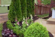 Landscaping/Outside