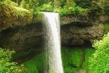 All things Oregon