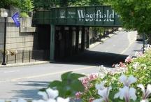 Westfield in Bloom