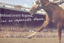 Secretariat / The greatest of race horses...
