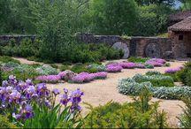 Huis: Nuwe tuin
