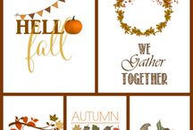 Thanksgiving decor / by Tina Goebel