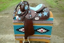 Barrel Racing/Cowgirl/Horses