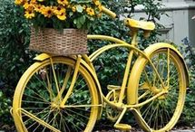 Bicycles and flowers / by Heather Knowles