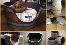Dog beds / by Rachel Leavitt