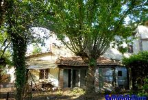 Pistoia Valdibrana vendesi 2 terratetti giardino terreno