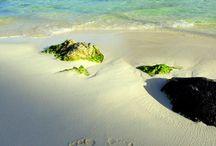 Beaches / B / by Russ Brooks