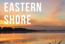 Virginia's Eastern Shore / Chincoteague, Assateague, Cape Charles