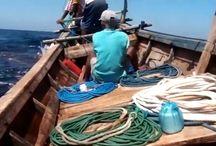 Рыбаки поймали огромную Манту.Ловля ската в океане.