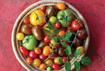 FOOD // You Say Tomato... / A celebration of all that is good about the humble tomato in all its glorious variety. Heaps of recipes and ideas to make the most of British Tomato Week and beyond! / by RPS & CICO Books