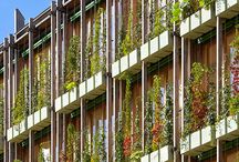 Architecture - green facade