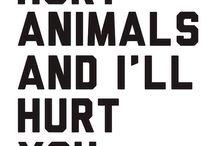 STOP animal abuse ❌