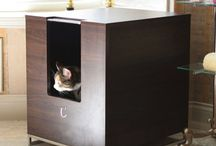 CAT Room /// Design / cat pet cat