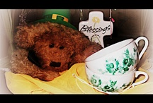 Leprechauns and Rainbows / All things St Patty's and Rainbows too