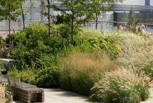 Gardens / Garden features