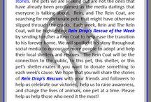 Rein Drop's Rescues
