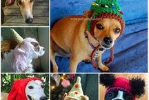 Crochet Dog Hats