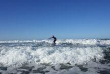 Our Surfers / Surfers
