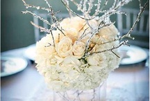 Winter weddings / Getting married in Winter can be so much fun. It doesn't even have to be about snow. Winter Adelaide wedding packages mean everything from flower inspiration to great photography and saving money all round.