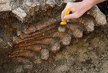 RÉGÉSZETI LELŐHELY / Régészeti leletek, lelőhelyek, érdekesség Magyarország határain belül.