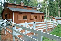 Equine fun!  / Barns, arenas, show tips etc / by Janis Lapsley
