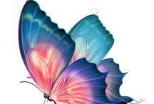 πεταλουδες