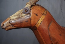 Taxidermy & Articulations / by Macy Graves