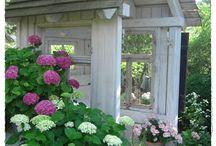 Ønskeliste, hagen min i vest