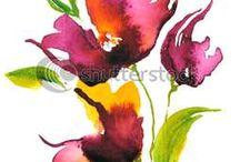 Soyer Colorado flowers