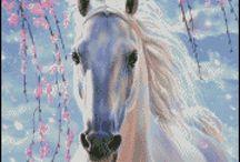 Atlar.  horses