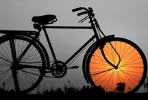 Cyclo-Paysages