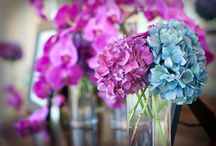 Mixed Jewel Tones / Diablo Country Club - Deb Hayes-Welch Photography