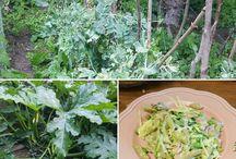 gardens food / iss was du säst