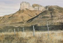 Texas Landscapes / Experience Texas' gorgeous hill country through the art of Charles Beckendorf