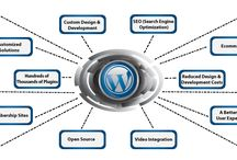 WordPress Development Services / Mamsys World is the best WordPress development company, specializing in developing customized WordPress website that allow you to have better user experience.