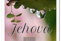 Jehova cizí jazyk