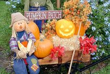 Fall decorations and crafts / by Sherry Cole-Sterling