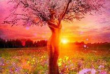 Žena a príroda